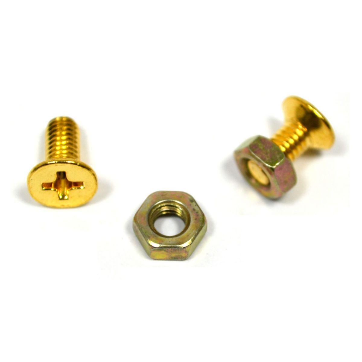 Parafuso dourado para escudo (Les Paul) (9mm x 4mm) - Kit c/ 2 peças  - Luthieria Brasil