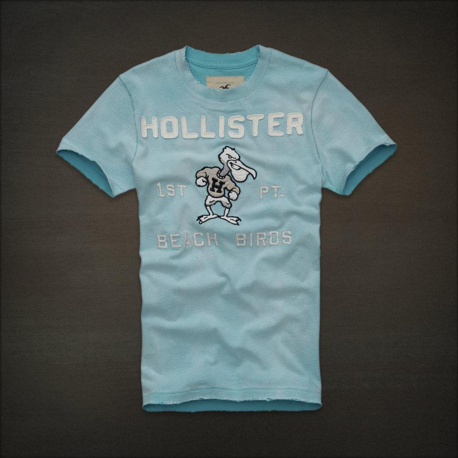 Camiseta Hollister 1ST