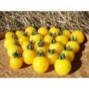 50 Sementes De Tomate Cereja Amarelo Pendente Laranjado