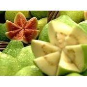 30 Sementes De Goiaba Branca Fruta De Pomar