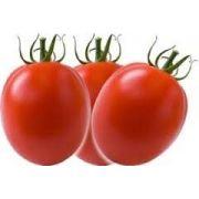 Sementes De Tomate Italiano Para Molhos