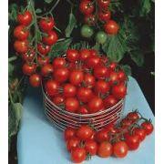 Sementes De Tomate Cereja Carolina Para Vasos Gourmet
