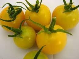 Sementes De Tomate Cereja Amarelo Pendente Laranjado 100 sementes  - BELLI PLANTAS