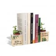 Aparador de Livros com Mini Vaso Nutrir
