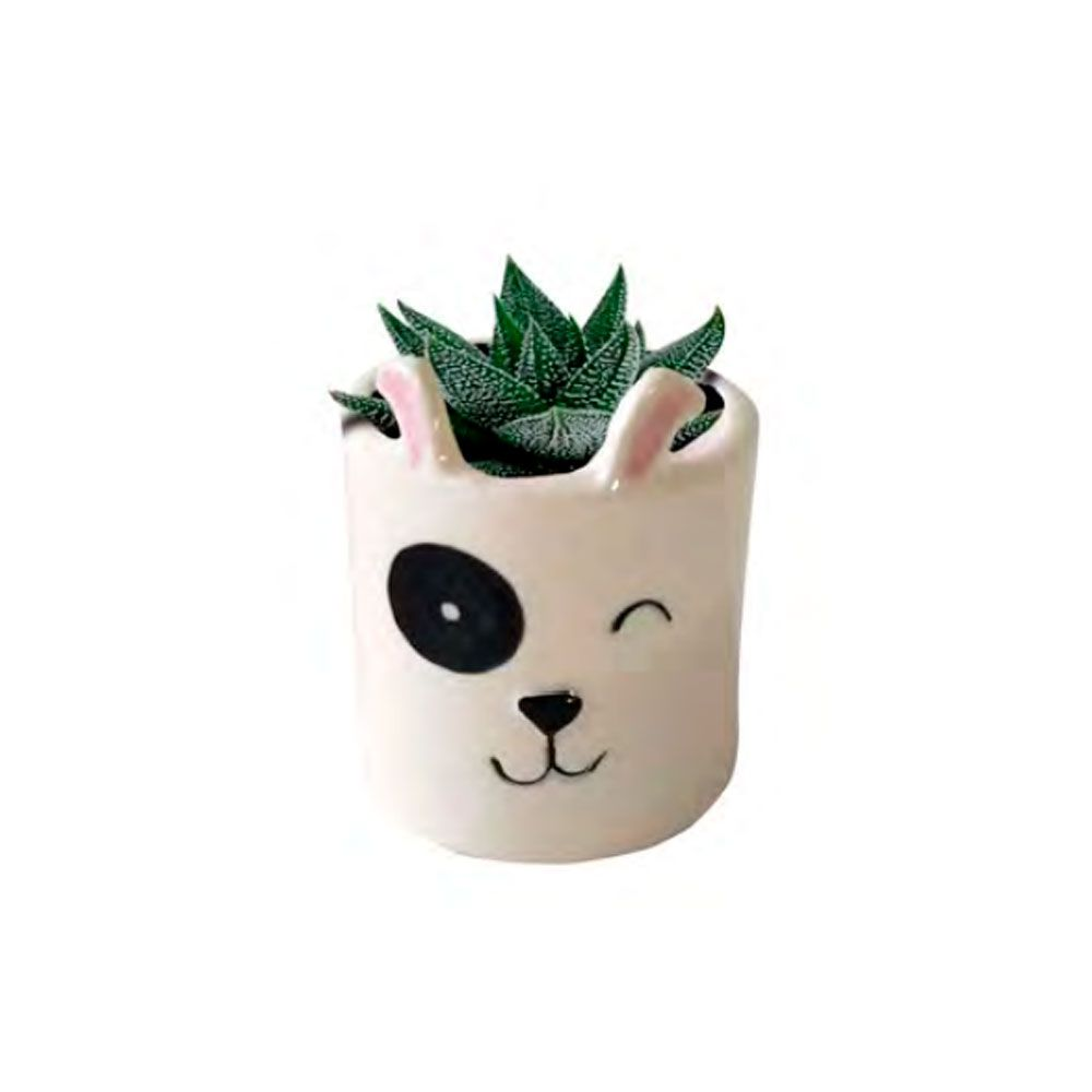 Dupla Mini Cachepots Vaso Decor Dogs Face Branco Cachorrinhos
