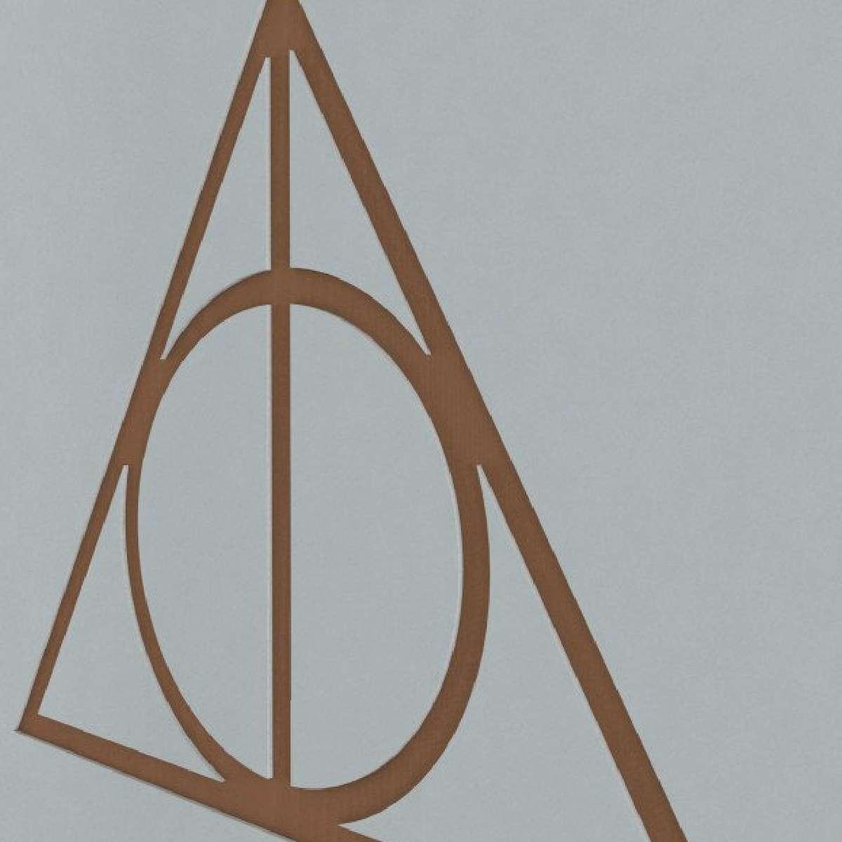 Quadro Decorativo Harry Potter Relíquias da Morte MDF
