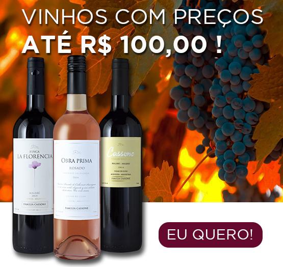vinhos até r$100,00