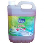 Detergente Lava Louça 5 Litros MAÇA