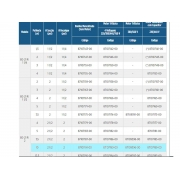 SCHNEIDER BC 21R 2 10,0CV TRIF 4V