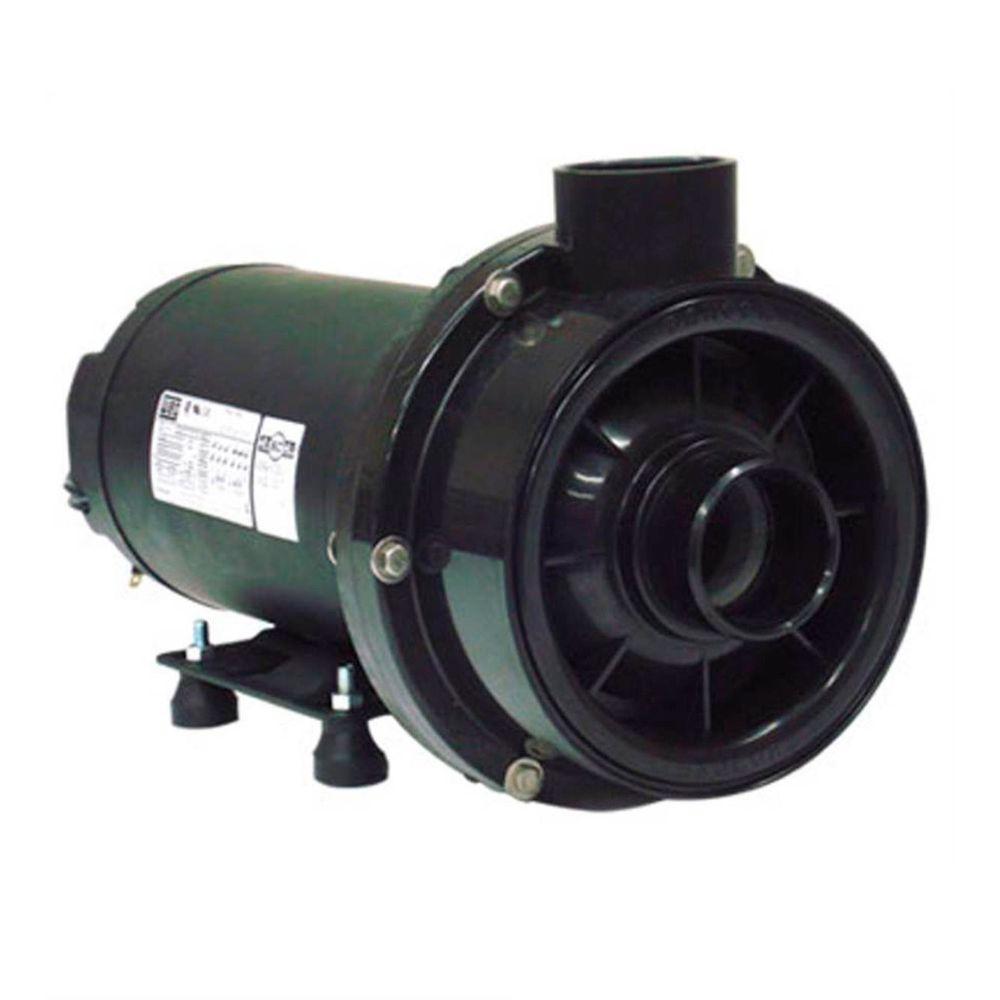 Bomba Para Hidromassagem Dancor CHS-22 2 CV Motor WEG Monofásico 127V/220V