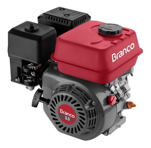 Motor À Gasolina 5,5 cv 4T Partida Manual B4t 5.5 H