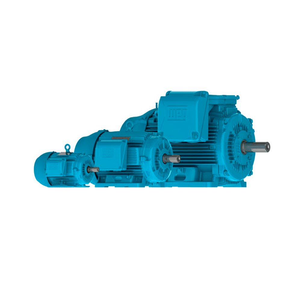 Motor WEG W22 IR2