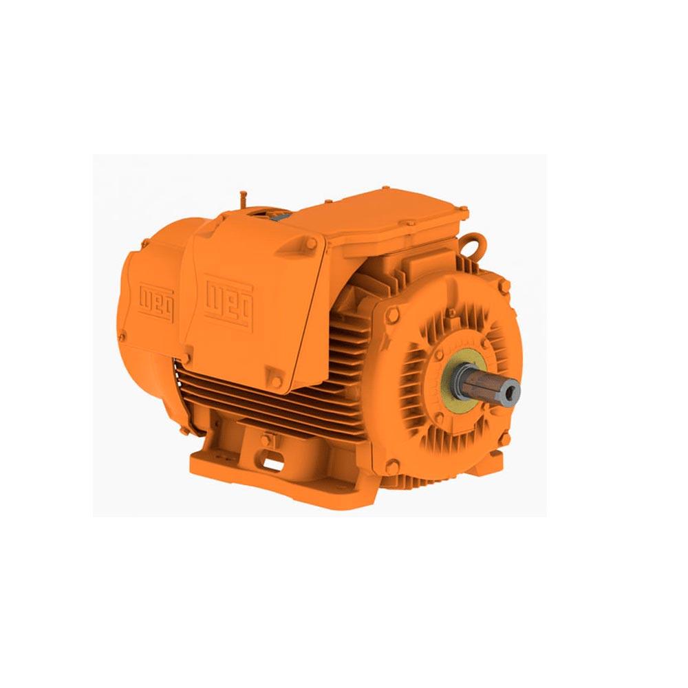 Motor WEG W22 Mining IR2
