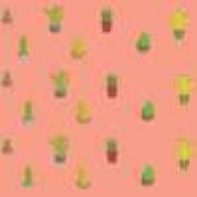 Papel de Parede Adesivo Infantil Cactus 1X1
