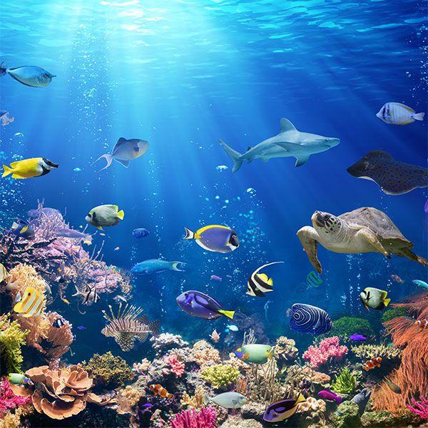 Papel de Parede 3D Oceano Peixes - Papel de Parede Paisagem  - Final Decor