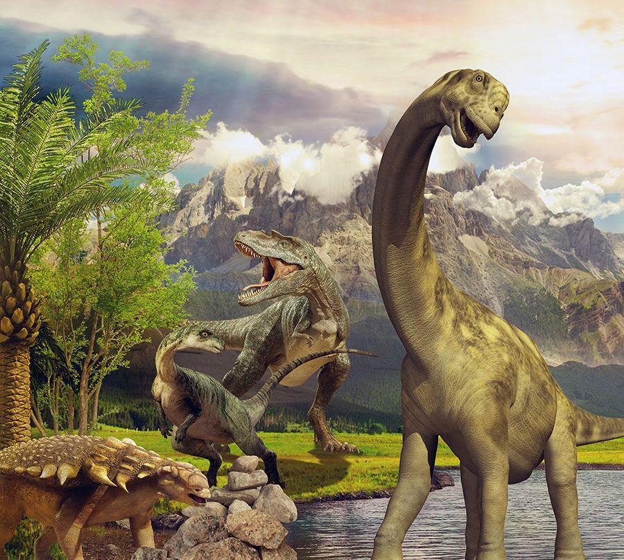 Papel de Parede Adesivo Infantil Dinossauros  - Final Decor