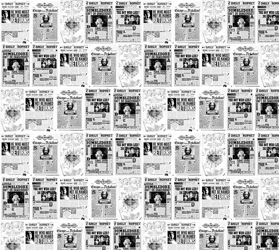 Papel de Parede Adesivo Infantil Jornal Harry Potter  - Final Decor