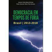 DEMOCRACIA EM TEMPOS DE FÚRIA: BRASIL 2013-2018<br>Antonio Celso Baeta Minhoto, Pedro Estevam A.  P. Serrano<br>(Org.)