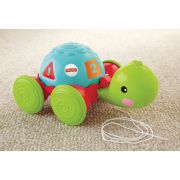 Empurra Tartaruga - Y8652 - Fisher-Price