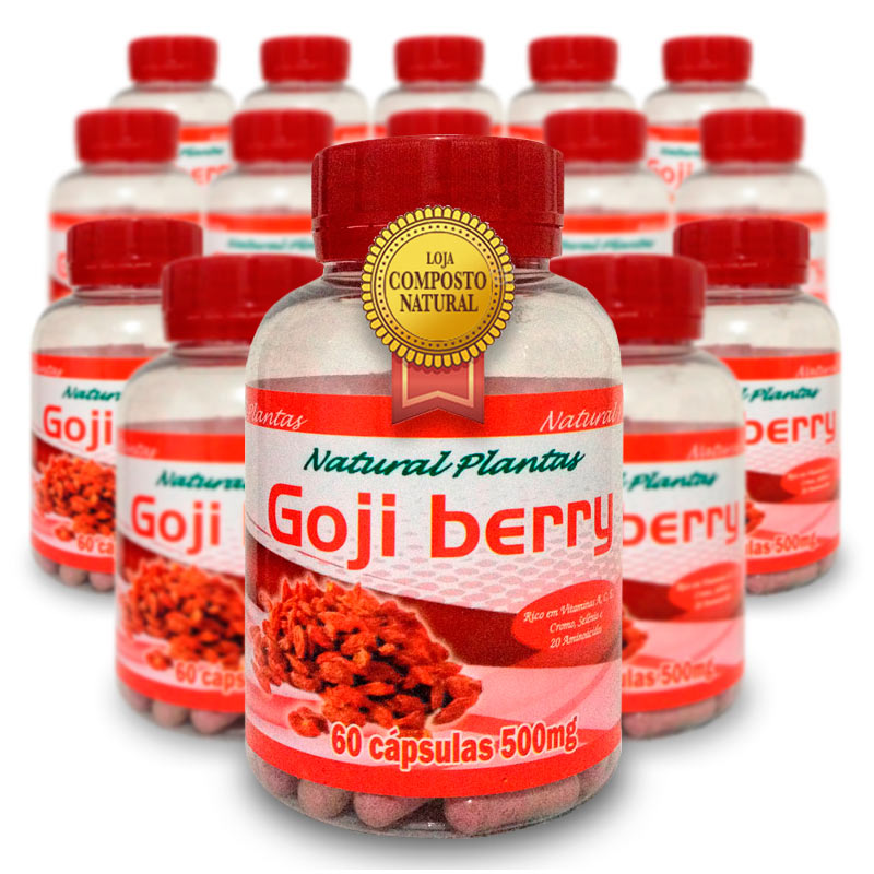 Goji Berry - Combo 15 Potes