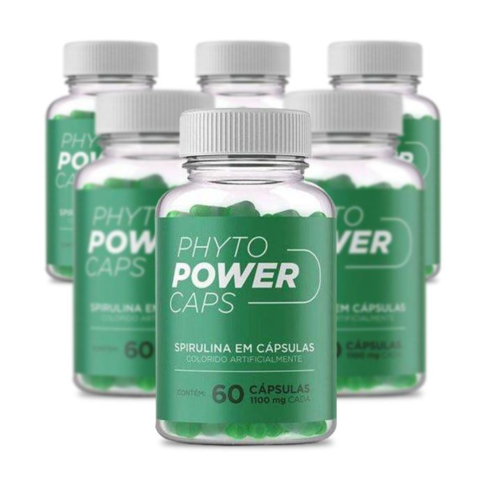 Phyto Power Caps 1100mg 60 Cápsulas 6 Potes  - Composto Natural
