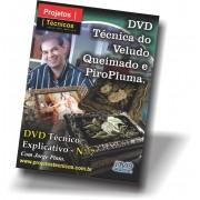 DVD - VELUDO QUEIMADO E PIROPLUMA - Nº 7 COM JORGE PINTO