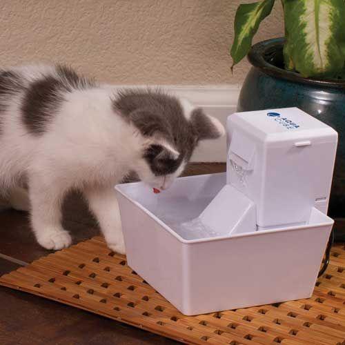 Bebedouro / Fonte Aqua Cube - Mantém a água em movimento Limpa e Fresca