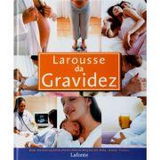 Livro - Larousse da Gravidez - Anne Théau
