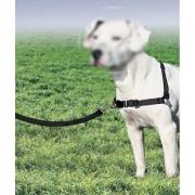 Guia Coleira Peitoral Easy Walk M Cães com Regulagem
