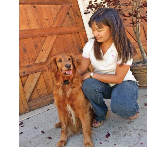 Coleira Adestradora Antilatido Pet Safe