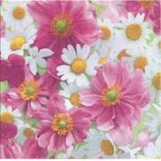 Guardanapo para Decoupage - Flor de Camomila