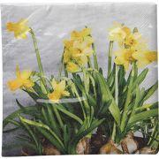 Guardanapo para Decoupage - Flor Narciso