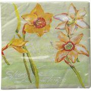 Guardanapo para Decoupage - Flores e Escritas