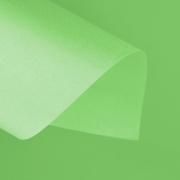 Papel Color Plus 180g 30,5 X 30,5 cm Buenos Aires - Verde Limão