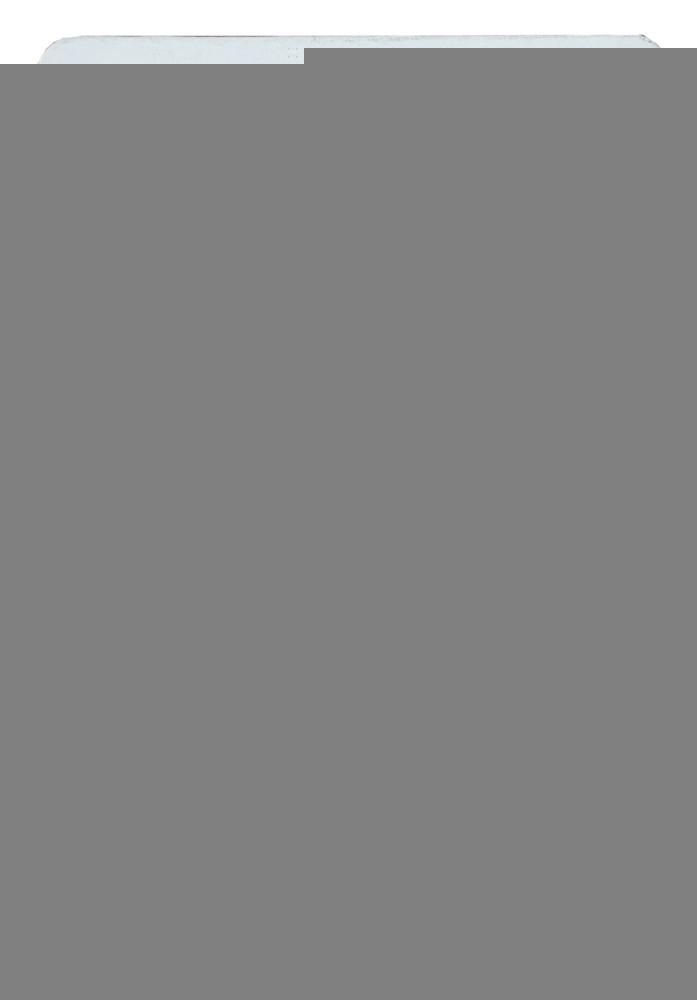Furador Regular Alavanca (Papel) Âncora  - Minas Midias