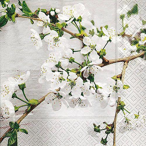 Guardanapo para Decoupage - Orquídea Branca  - Minas Midias