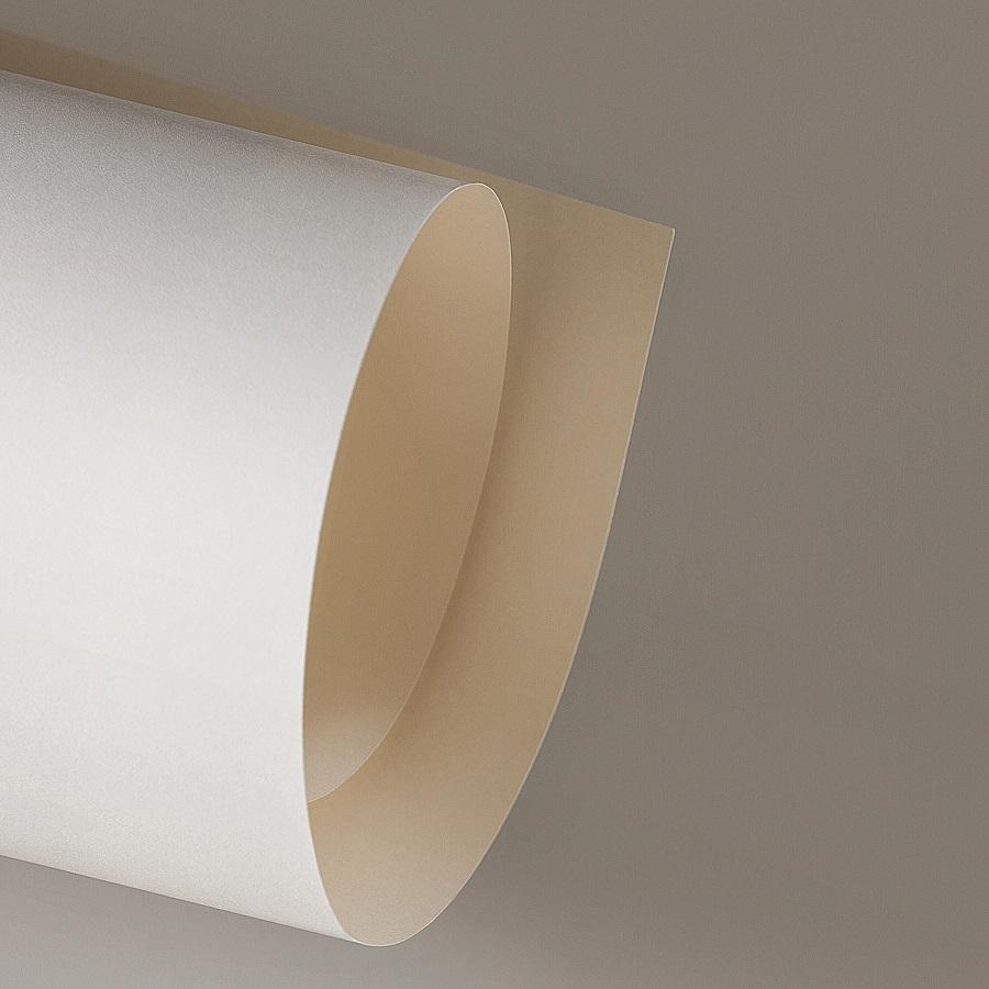 Papel Color Plus 180g 30,5 x 30,5 cm Marfim  - Minas Midias