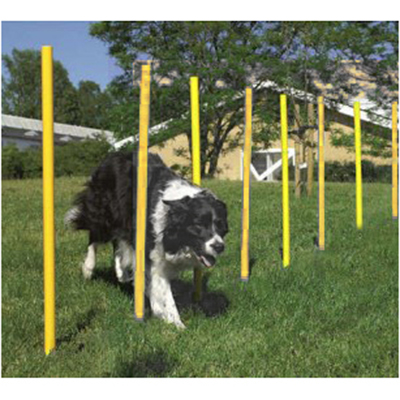 Estacas Zig Zag Fincável na Grama Agility para Treinamento Canino Eleva Mundi