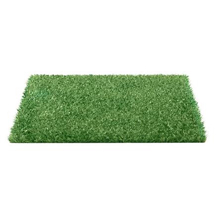 Refil Pet Grass Extra Grande Eleva Mundi