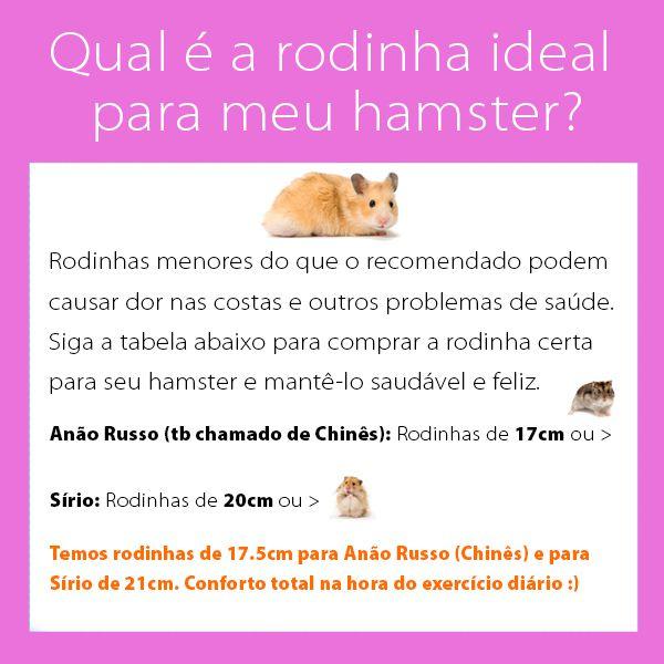 Rodinha de Grade Spin 21cm para Hamster Eleva Mundi - Rosa