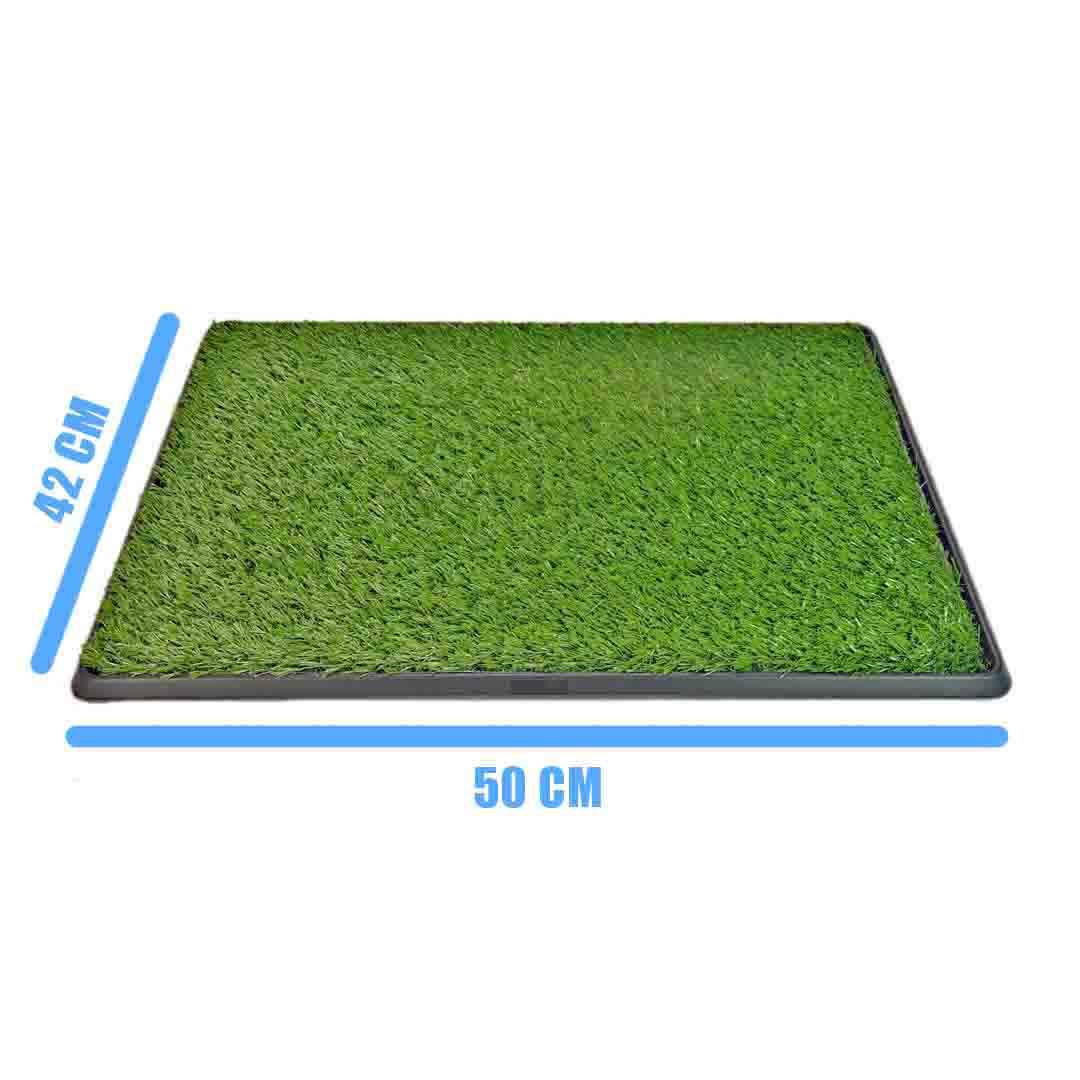 Sanitário Canino Pet Grass Pequeno + Refil Extra - Eleva Mundi