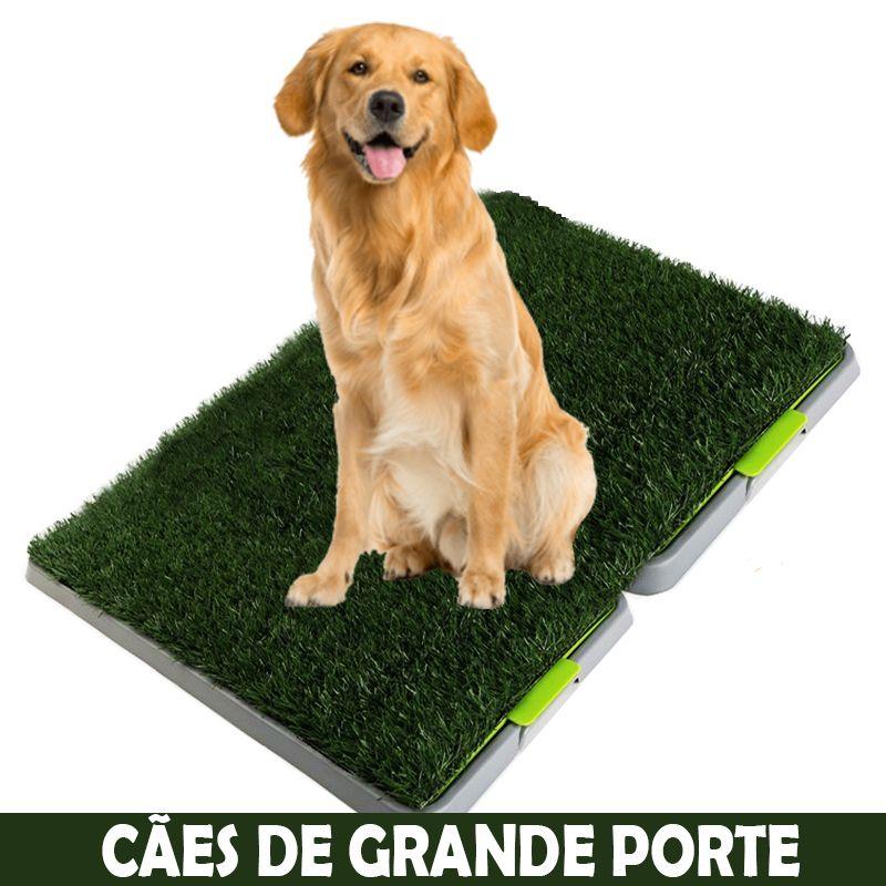 Tapete Higiênico Duplo Sanitário Cães Grande Porte - Eleva Mundi