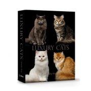 Livro Caixa Decorativo Book Box Luxury Cats