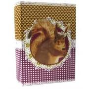 Livro Caixa Pet Pop Esquilo 30x20x7cm