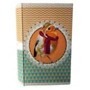 Pet Pop - Livro Cofre Pássaro 21x12x4cm