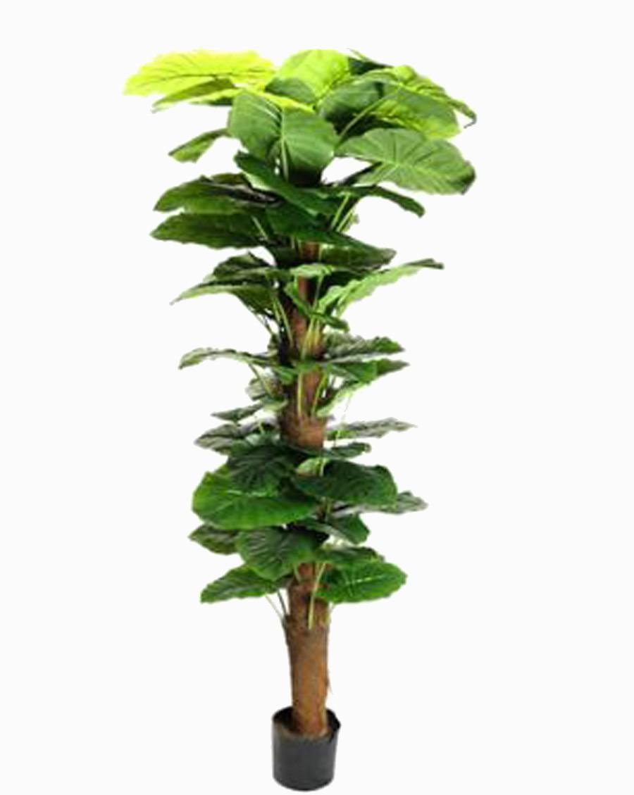 Árvore Artificial Jibóia Gigante Pvc Com Vaso Preto 180cm  - Arrivo Mobile
