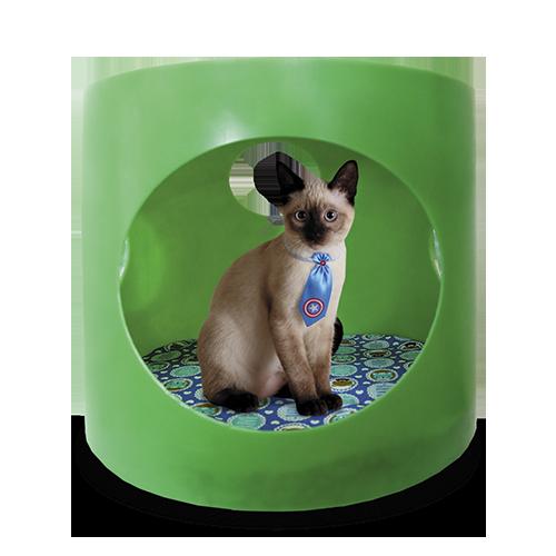 Caminha Toquinha Para Cães E Gatos 70X55  - Arrivo Mobile