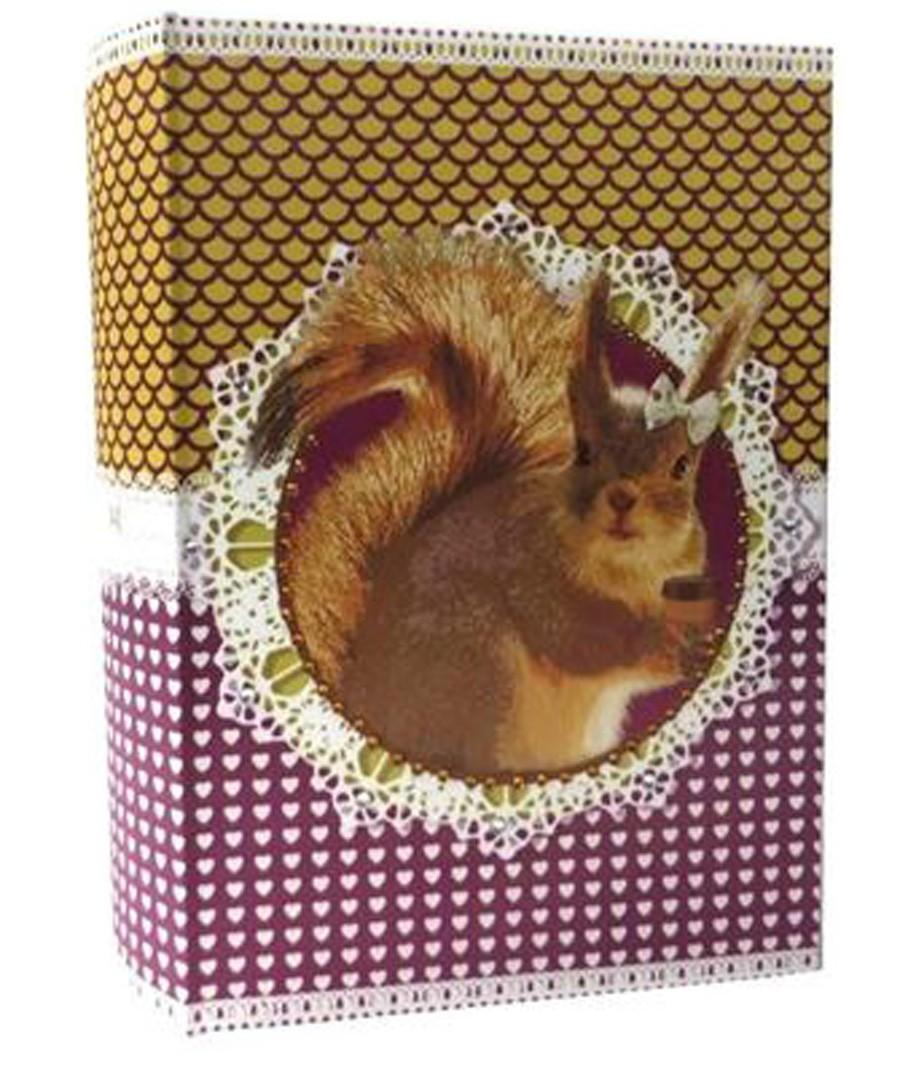 Livro Caixa Pet Pop Esquilo 30x20x7cm  - Arrivo Mobile