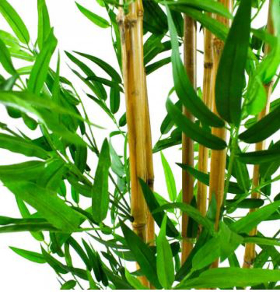 Planta Artificial Bambu Folhas Verdes 190cm  - Arrivo Mobile
