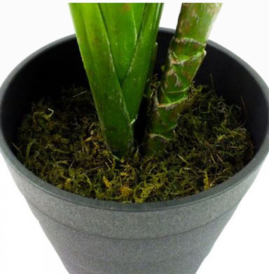 Planta Artificial Comigo Ninguém Pode 120cm  - Arrivo Mobile